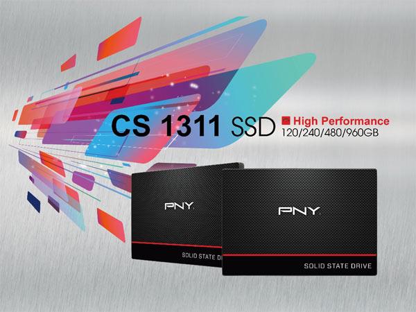 pny-cs1311