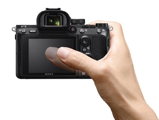 Sony A7 III touch AF-Large